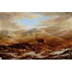 Údolí jelenů