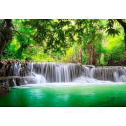 Vodopády v lese