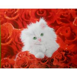 Bílé kotě v růžích