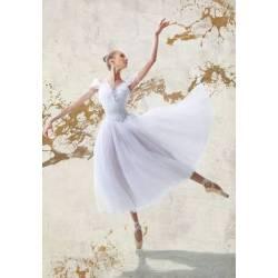 Baletka VI