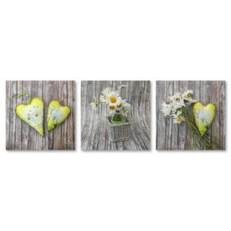 Kopretiny a žluté srdce