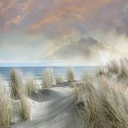 Mořská pláž III