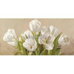 Obraz bílé tulipány