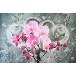 Nástěnný obraz orchidej