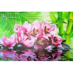 Obraz spa orchidej a kameny