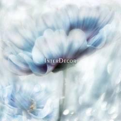 Modrý květ 1