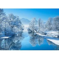 Obraz zimní krajina II
