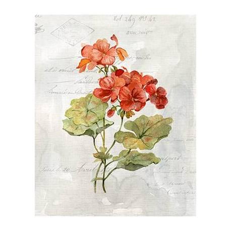Obraz červených květů