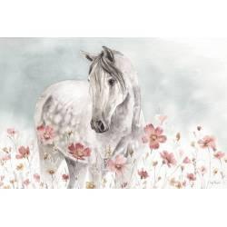 Obraz divoké koně