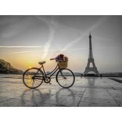 Obraz kolo a Paříž