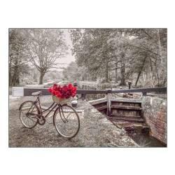 Kolo s růží u kanálu