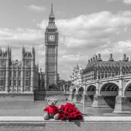 Medvídek a kytice růží na promenádě Temže , Londýn