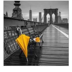 Žlutý deštník a kytice růží na lavičce