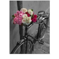 Kytice růží na kole