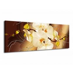 Obrazy na plátně orchidej žlutá