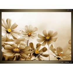 Hnědé květy