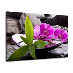 Orchidej v nádobě