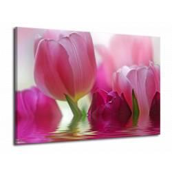 Obraz růžový tulipán