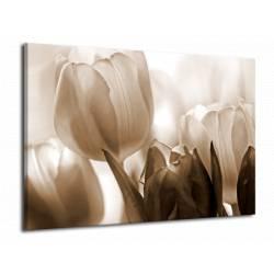 Obraz hnědý tulipán
