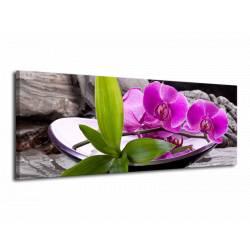 Obraz orchidej v nádobě