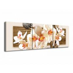 Obraz bílá orchidej tři díly