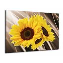 Abstraktní obraz slunečnice