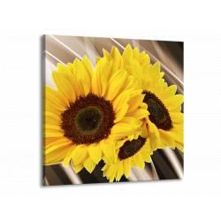 Abstraktní obraz slunečnice čtvercový