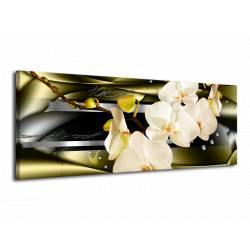 Orchidej 8