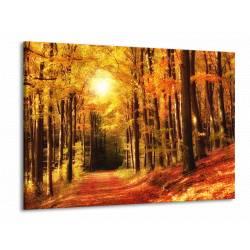 Podzimní krajina 3