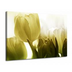 Zelenkavé tulipány