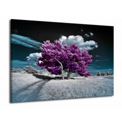 Fialové stromy