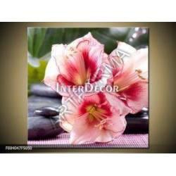 Růžové květy 4 obraz na plátně