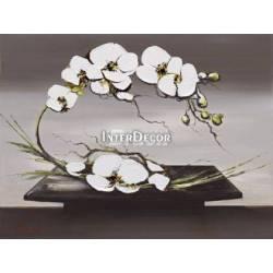 Obraz Orchidej 1