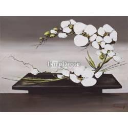 Obraz Orchidej 2